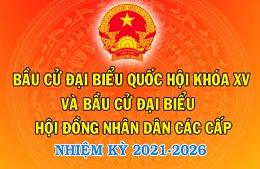 Bầu cử nhiệm kỳ 2021-2025